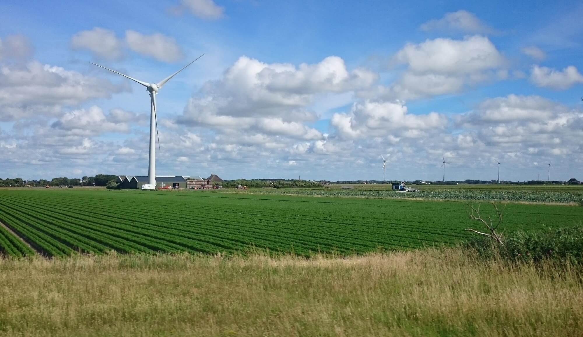 A vida na Holanda com seus campos de flores e de energia eólica